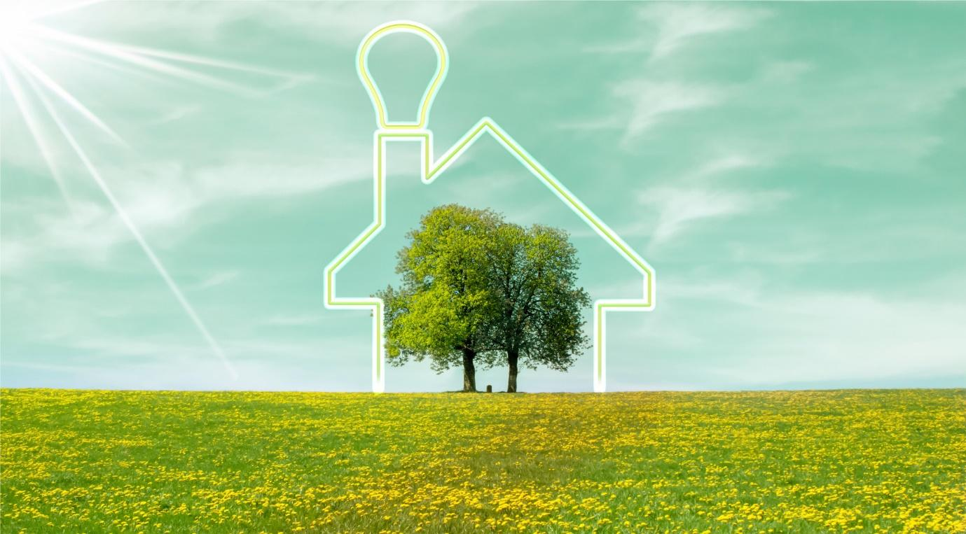 5 Easy Ways to Welcome Green Energy Into Your Lifestyle